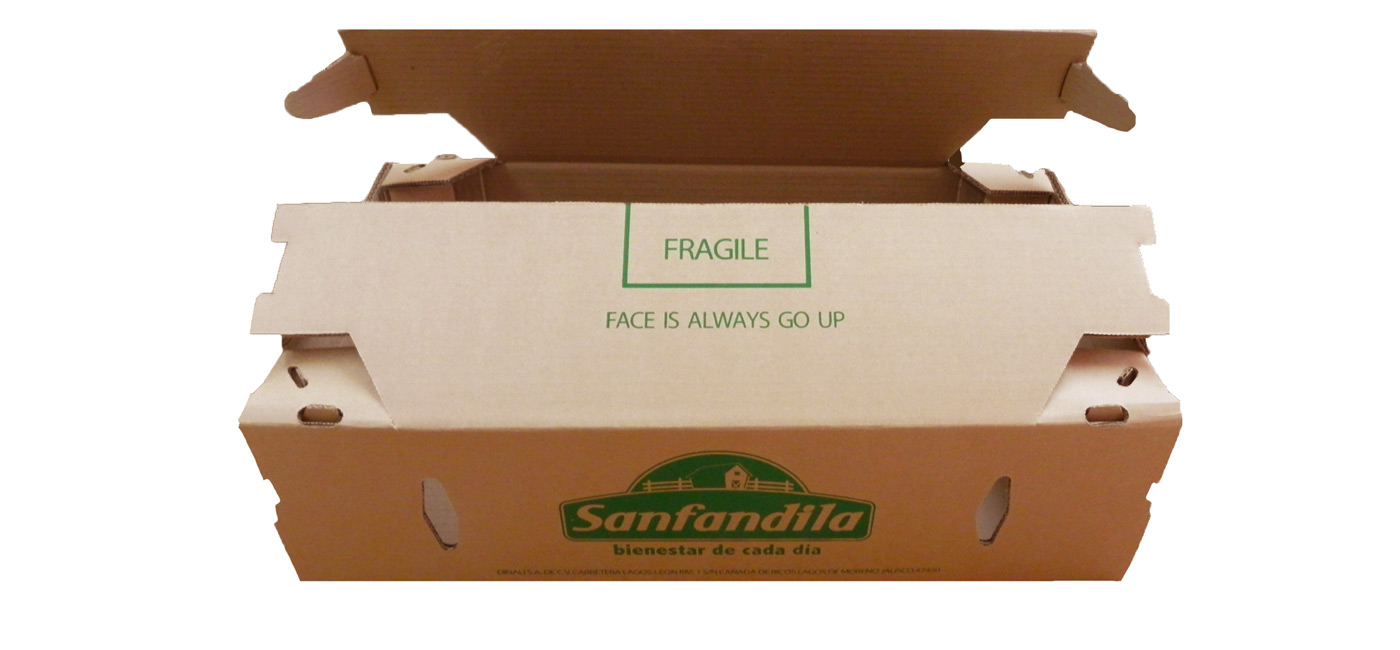Troquelada_Packaging2